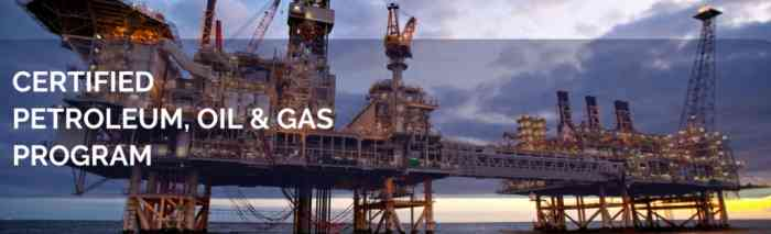 oil and gas course for electrical engineers